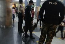 Photo of Transfer del Metro de Santo Domingo amanece intervenido por Unidad Canina K9